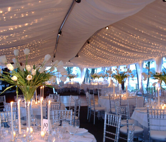 Wedding Canopy Rental: Michigan's Premier Party And Tent Rental Company, Weddings